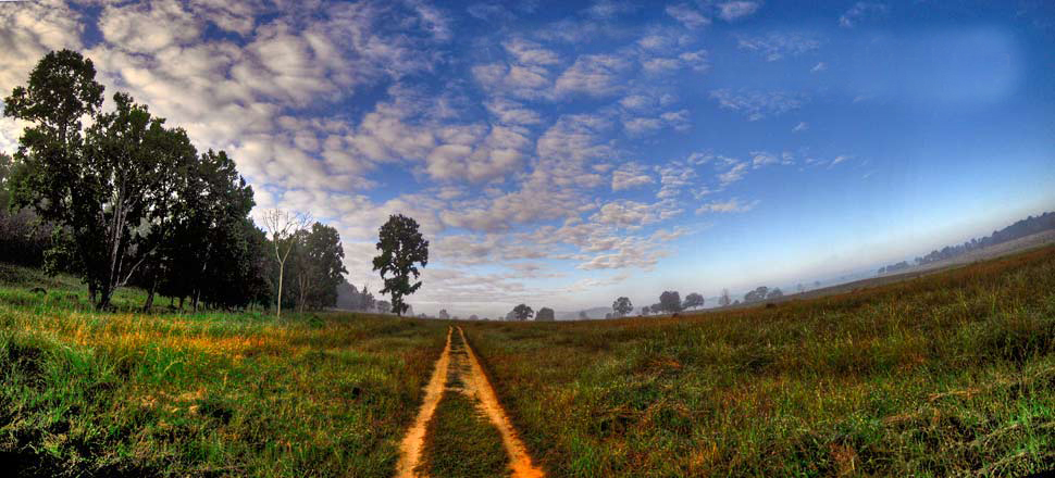 Most Beautiful Park of Central India- Kanha National Park