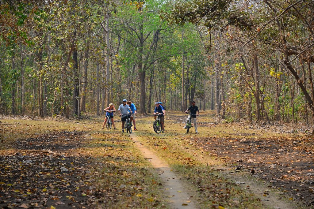 Cycling through the Rukad Forest