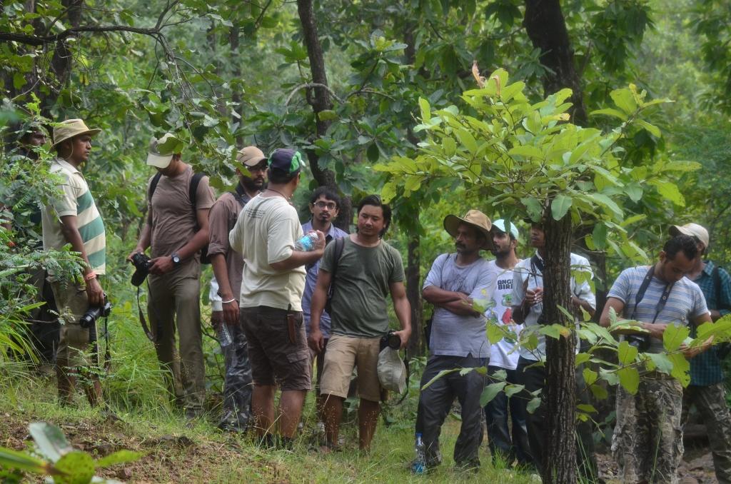 Naturalist Training