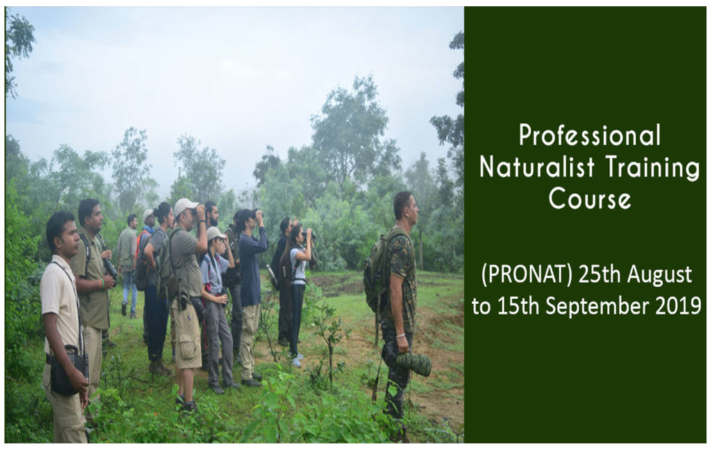 pugdundee safaris professional naturalist training course