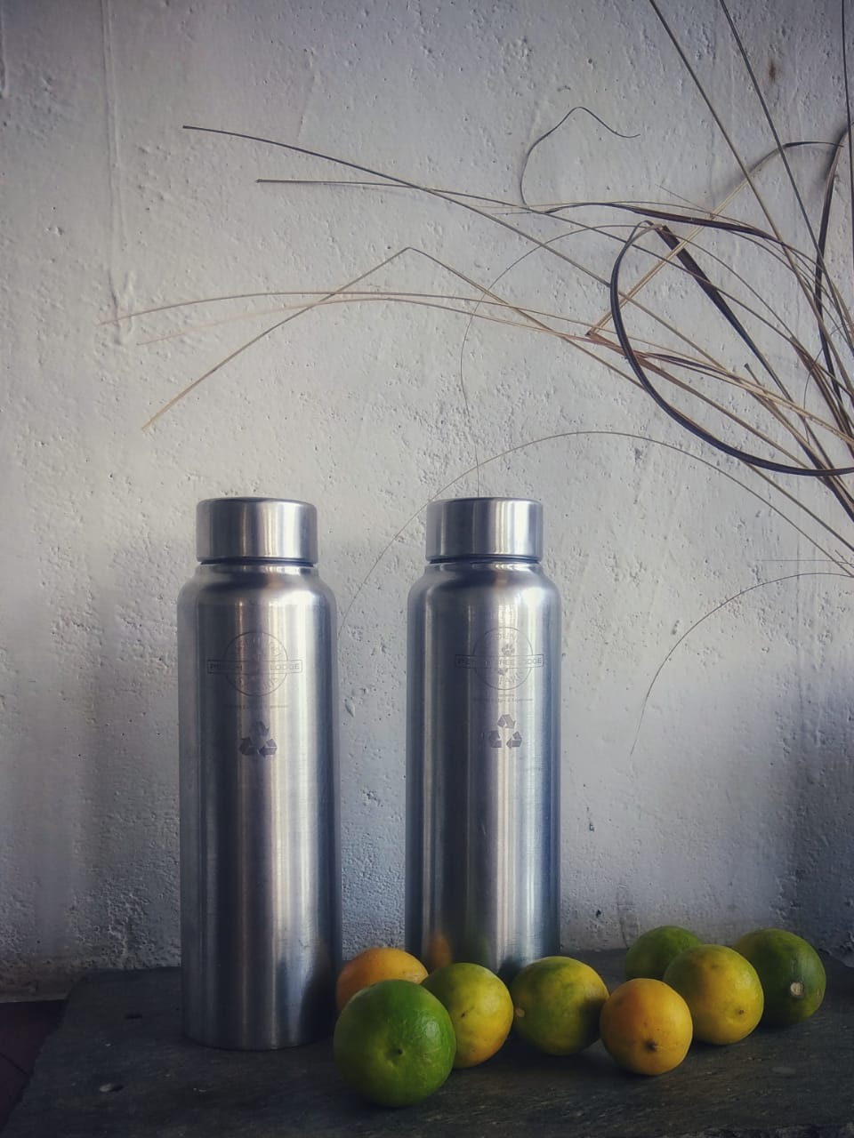 Steel sippers by pugdundee safaris.