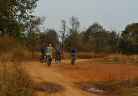 5 Top Things to Do in Pench, Beyond Safari