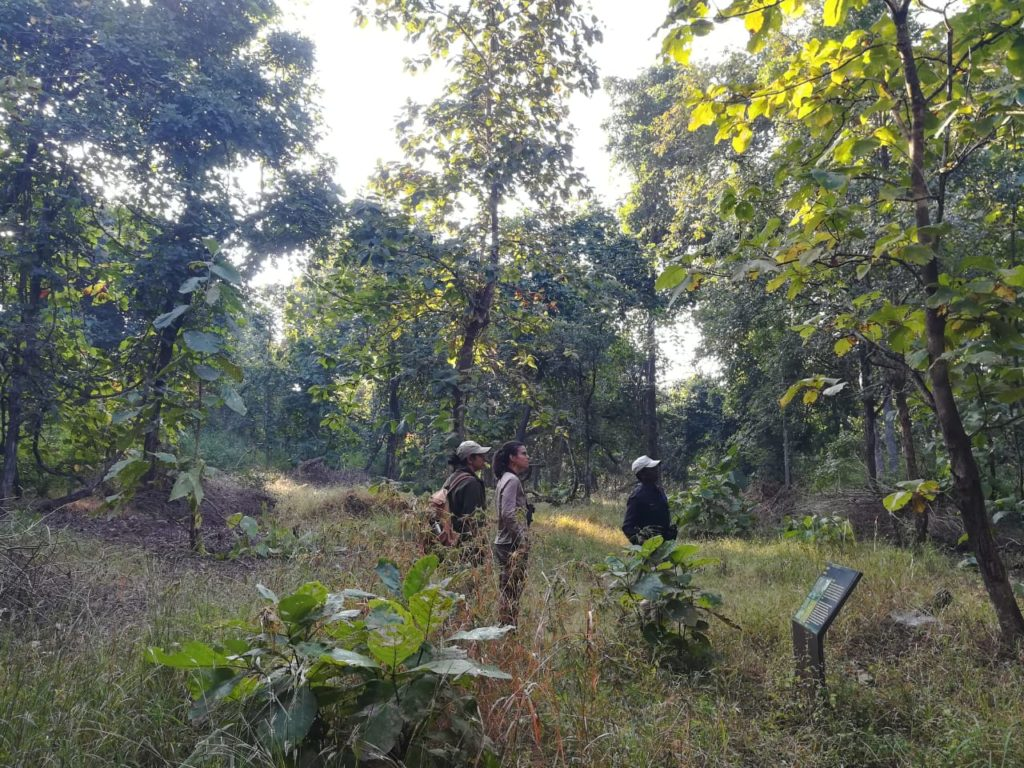 pugdundee-safaris-travelogue-Pench-runi-jhuni-walking-trail