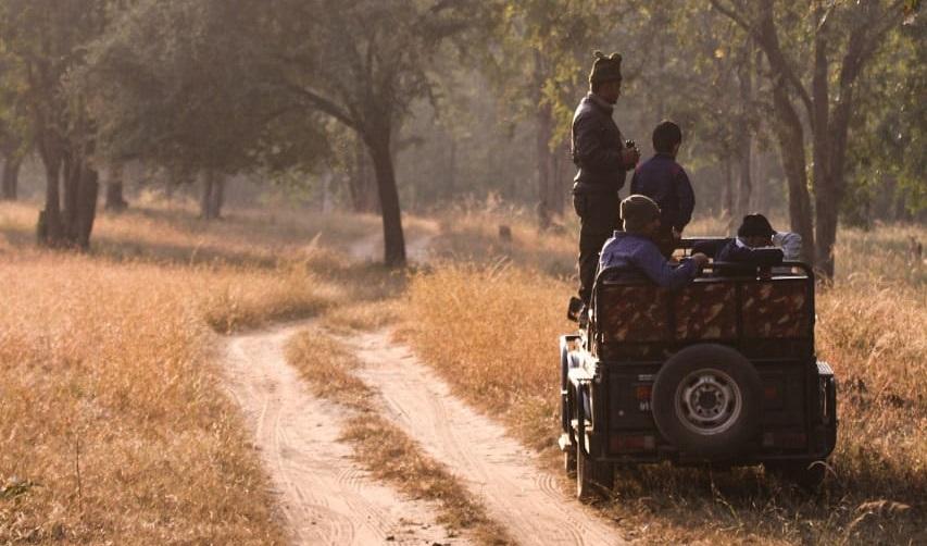 travel-blog-experiences-in-satpura-pugdundee-safaris-churna-full-day-safari