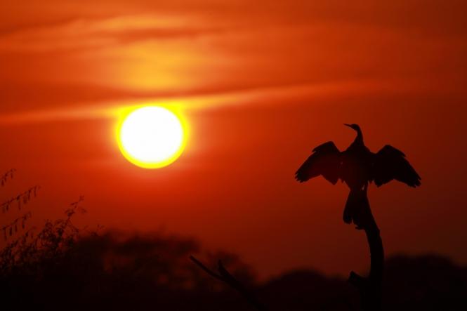 pugdundee-safaris-sunset-kanha-national-park