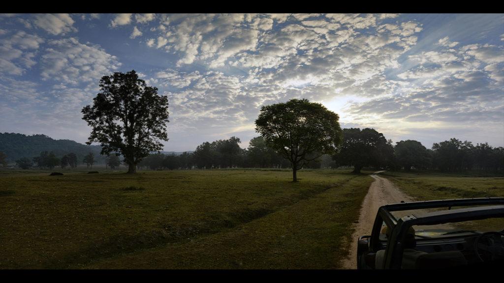 pugdundee-safaris-kanha-national-park-view