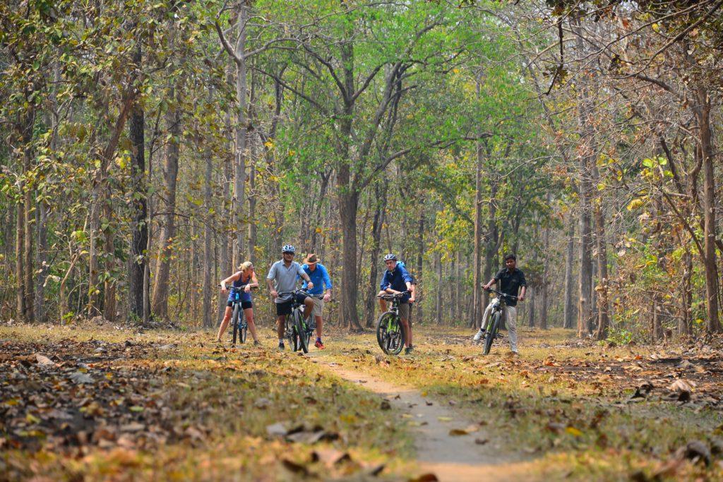 pugdundee-safaris-cycling-trails