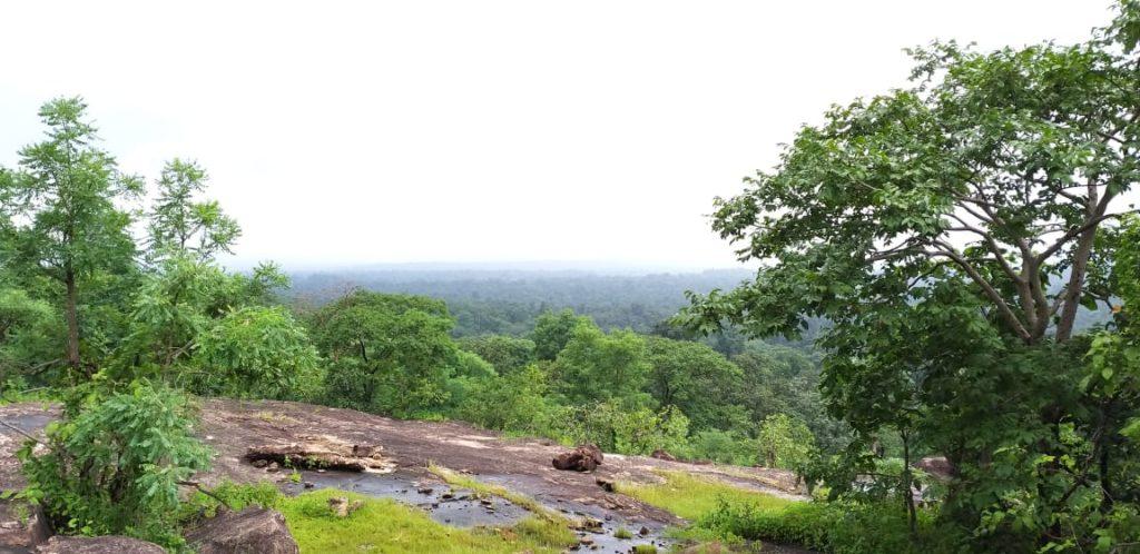 pugdundee-safaris-kanha-national-park-hilltop-view