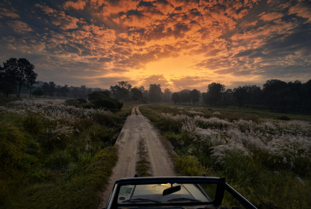 pugdundee-safaris-scenic-view-at-kanha-national-park