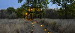 Pench Tree Lodge - Pench