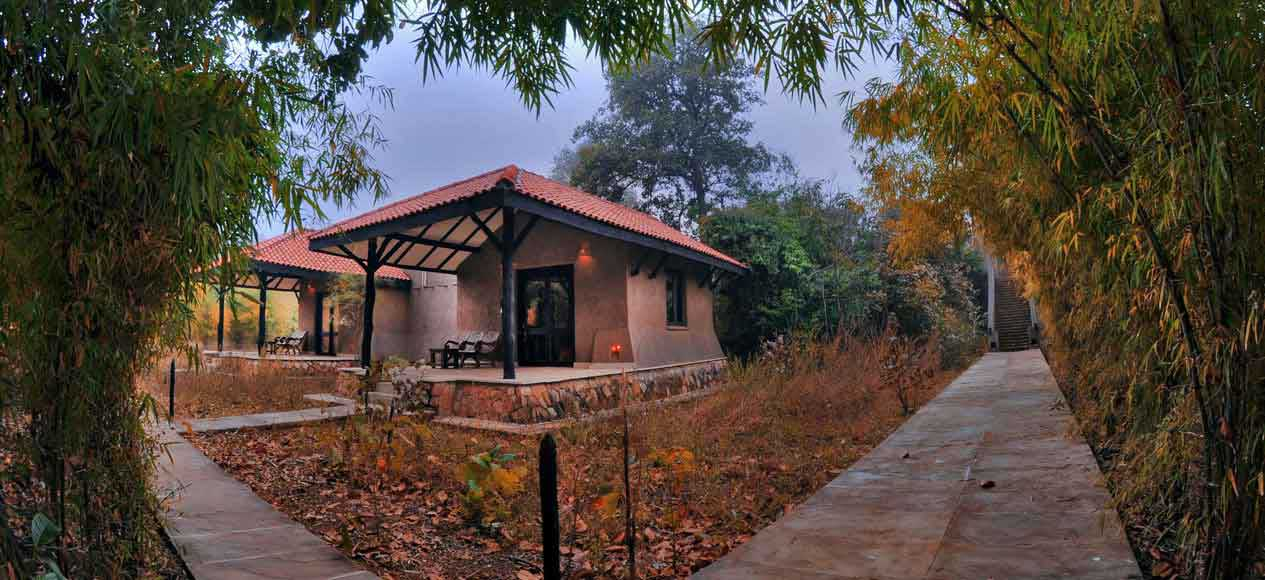 Kings Lodge – Bandhavgarh Tiger Reserve<span>Treated like Kings at Kings Lodge – Guest Book</span>