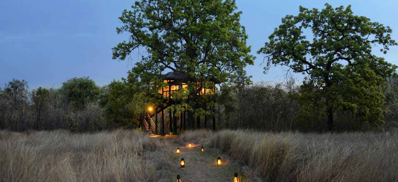 Pench Tree Lodge – Karmajhiri, Pench Tiger Reserve<span>Indias best wildlife stays - Condenast Traveller </span>