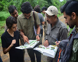 Wildlife courses in india after 12th