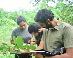 Wildlife courses in india after graduation