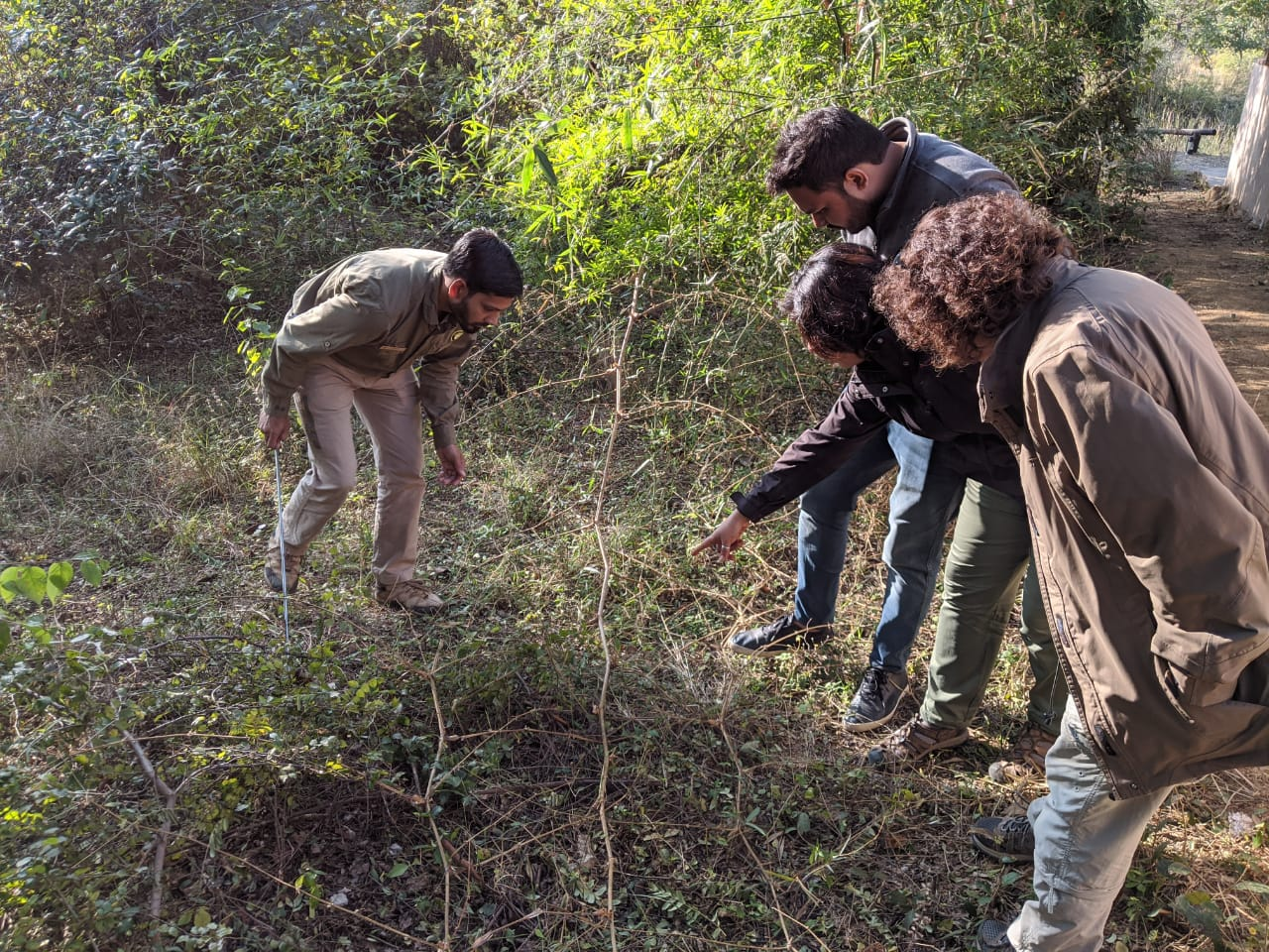 Best wildlife courses in india