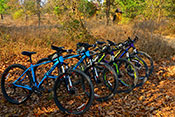 Cycling tours india