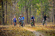 Cycling in kanha national park