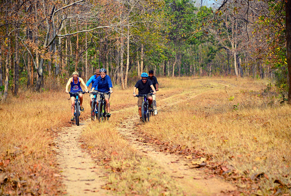 Jungle Book Cycling Experience