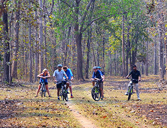 Cycle tours in india
